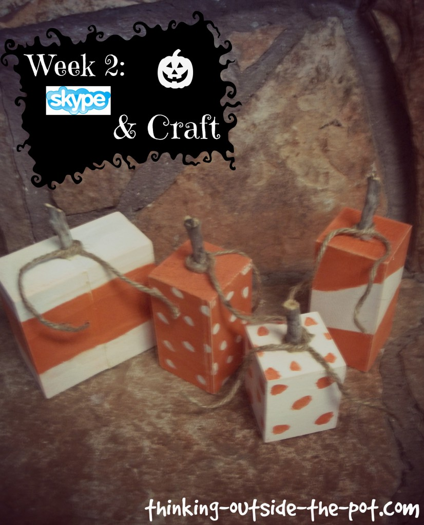 week 2 skype & craft