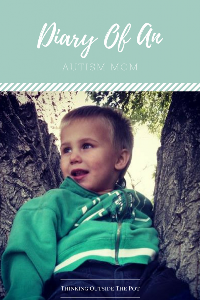 Diary Of An Autism Mom #2